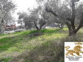 LAND for Sale - Lamia