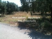 LAND for Rent - fthiotida